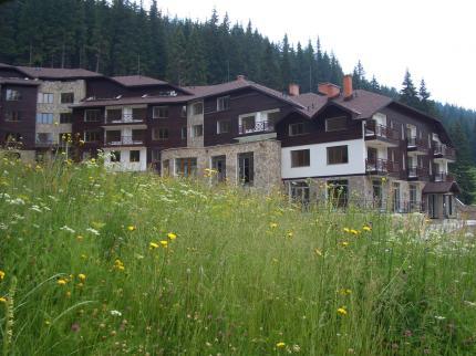 The Stream Resort - Laterooms