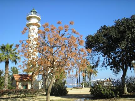 Bq Andalucia Beach - Laterooms